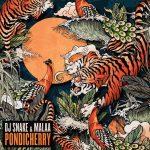 DJ-SNAKE-MALAA-PONDICHERRY